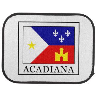 Acadiana Car Floor Mat