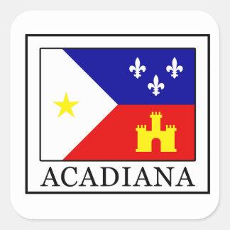 Acadiana Square Sticker