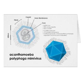 Acanthamoeba polyphaga mimivirus APMV Diagram Card