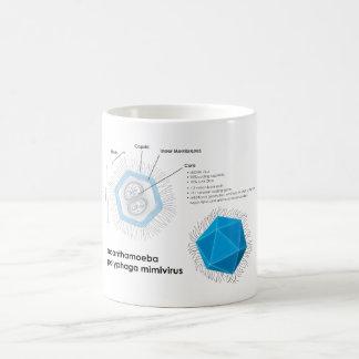 Acanthamoeba polyphaga mimivirus APMV Diagram Coffee Mug