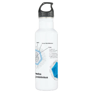 Acanthamoeba polyphaga mimivirus APMV Diagram Stainless Steel Water Bottle