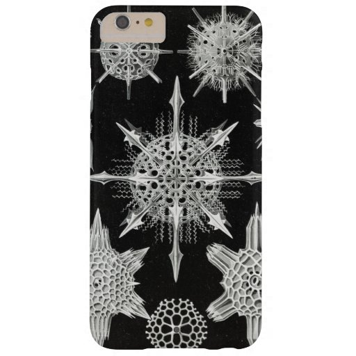 Acanthophracta, Wunderstrahlinge Aquatic Animal Barely There iPhone 6 Plus Case