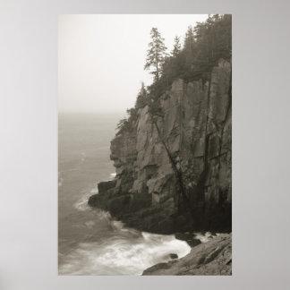 Acantilado del mar el al frente de Quoddy, Maine Póster