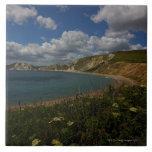 Acantilados costeros y paisaje azulejos ceramicos