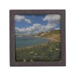 Acantilados costeros y paisaje caja de recuerdo de calidad