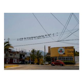 Acapulco Street 1 Postcard