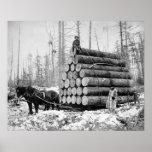 Acarreo de una carga de Logs, 1908 Impresiones