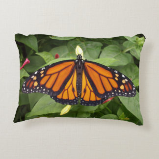 Accent Pillow,Monarch Style #4b