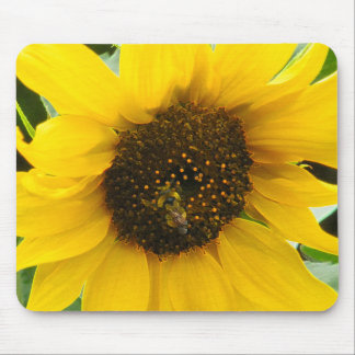 Accented Edges Busy Bee Mouse Pad