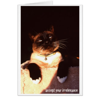 Accept Your Irrelevance Greeting Card