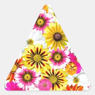 Accesorios amarillos rosados imponentes del modelo pegatina triangular