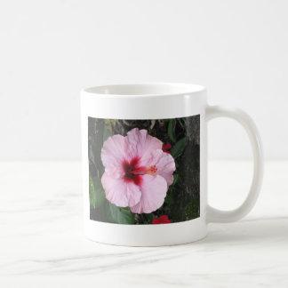Accesorios rosados hawaianos tropicales de la flor taza