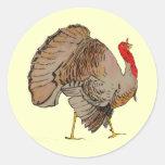 Acción de gracias a todo color Turquía Pegatina Redonda