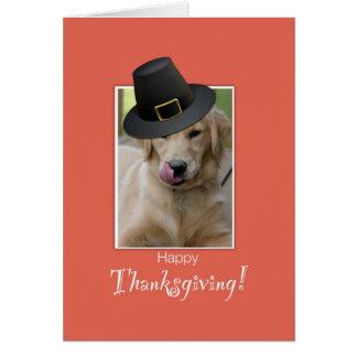 Acción de gracias divertida del perro, peregrino q tarjeton
