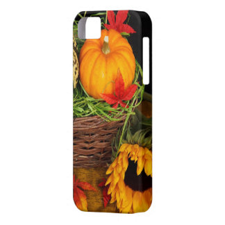 Acción de gracias feliz de la cosecha de la tempor iPhone 5 carcasas