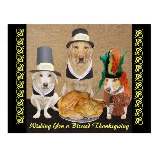 Acción de gracias feliz de los perros divertidos a postales