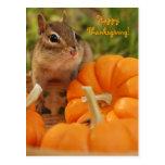Acción de gracias feliz poca postal del Chipmunk
