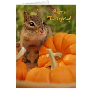 Acción de gracias feliz poca tarjeta del Chipmunk