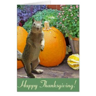 Acción de gracias linda de la ardilla tarjeta de felicitación