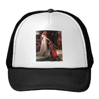 Accolade - Calico Persian cat Hat