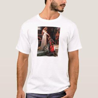 Accolade - Calico Persian cat T-Shirt