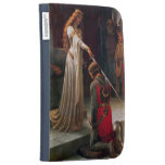 Accolade-The Knight Kindle 3G Case