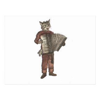 Accordion Cat Postcard