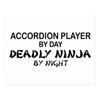 Accordion Deadly Ninja by Night Postcard