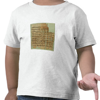 Account of the Battle of Qadesh, given to Syria by Tshirt