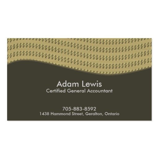 Accounting Business Card - $$$