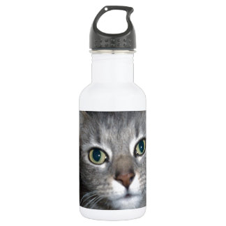 Accused_Cat,_(Part-One,)_ Meet-Fluffy,_ Water Bottle