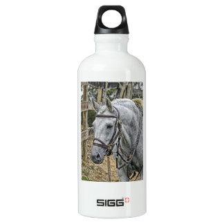 Ace el caballo del rescate