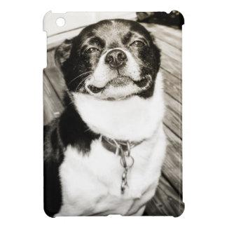 Ace iPad Mini Case
