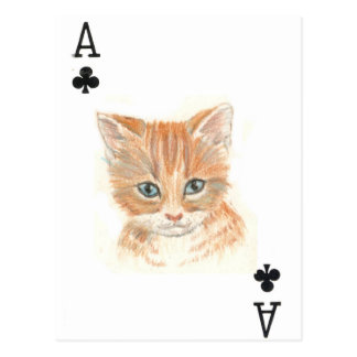 Ace of Clubs Post Card