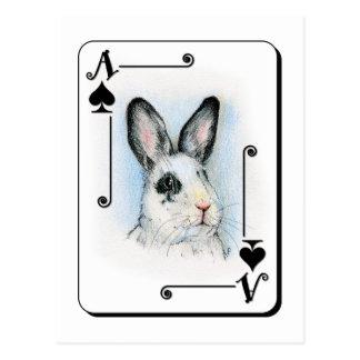 Ace of Spades Postcard
