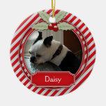 Acebo de la raya del bastón de caramelo del ornaments para arbol de navidad