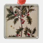 """Acebo """"de un herbario curioso"""", 1782 adorno navideño cuadrado de metal"""