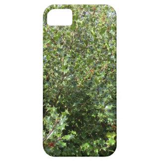 Acebo del otoño en Hednesford iPhone 5 Cobertura
