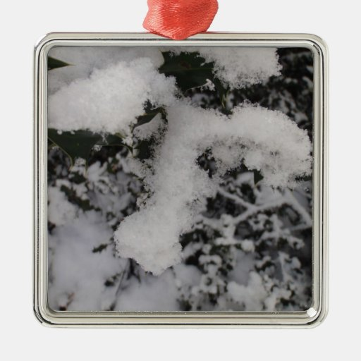 Acebo nevado adorno de navidad
