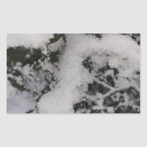 Acebo nevado rectangular altavoz