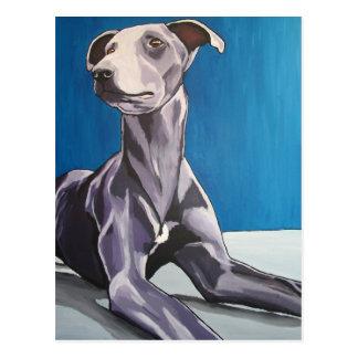 "Acechador de ""Reuben Bluedog"" - Postal"