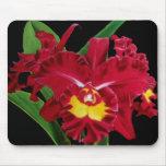 Aceite de la orquídea en la lona Mousepad 2 Tapetes De Raton