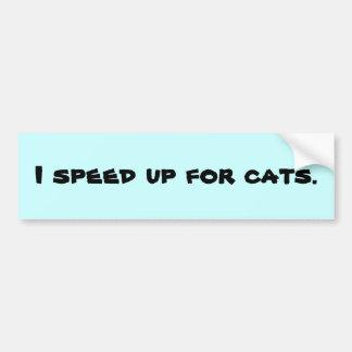 Acelero para los gatos etiqueta de parachoque