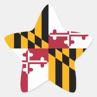 Acento del diseño de la bandera del estado de pegatina en forma de estrella