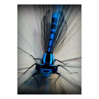 ACEO Blue Beauty Damsel Fly/Dragonfly Wings Large Business Card