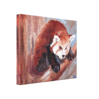 Aceo de la panda roja impresiones en lona
