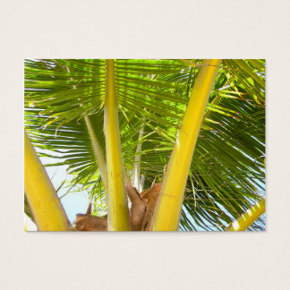 ACEO Palm Tree Business Card