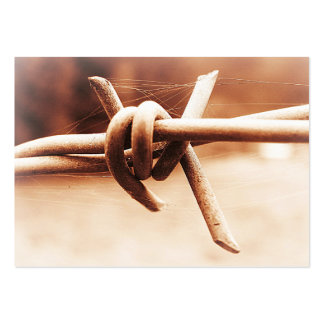 ACEO Sepia Barbed Wire Close Up Large Business Cards (Pack Of 100)