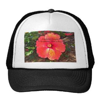 Aceptación fibro gorras