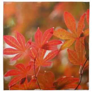 Acer leaves napkin